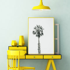 Photography poster print with a black and white palm tree, in office