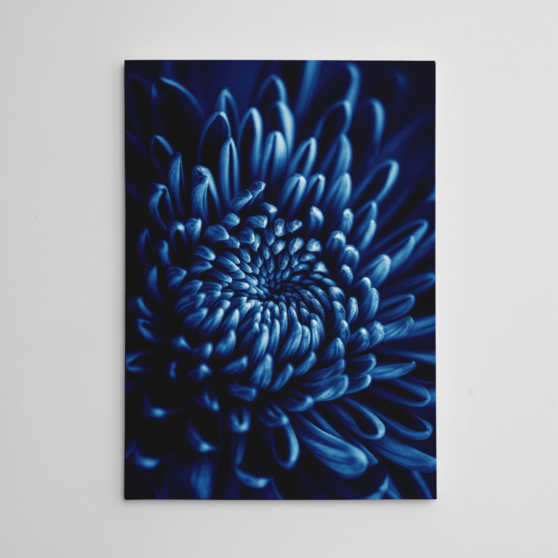 Floral photography canvas print, with a blue flower close-up