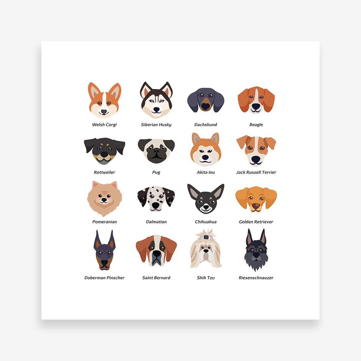 Square poster print with dog breeds name and images 4