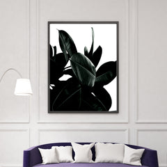 Photography poster print by Kubistika, with dark green Ficus leaves, on white background, in living room