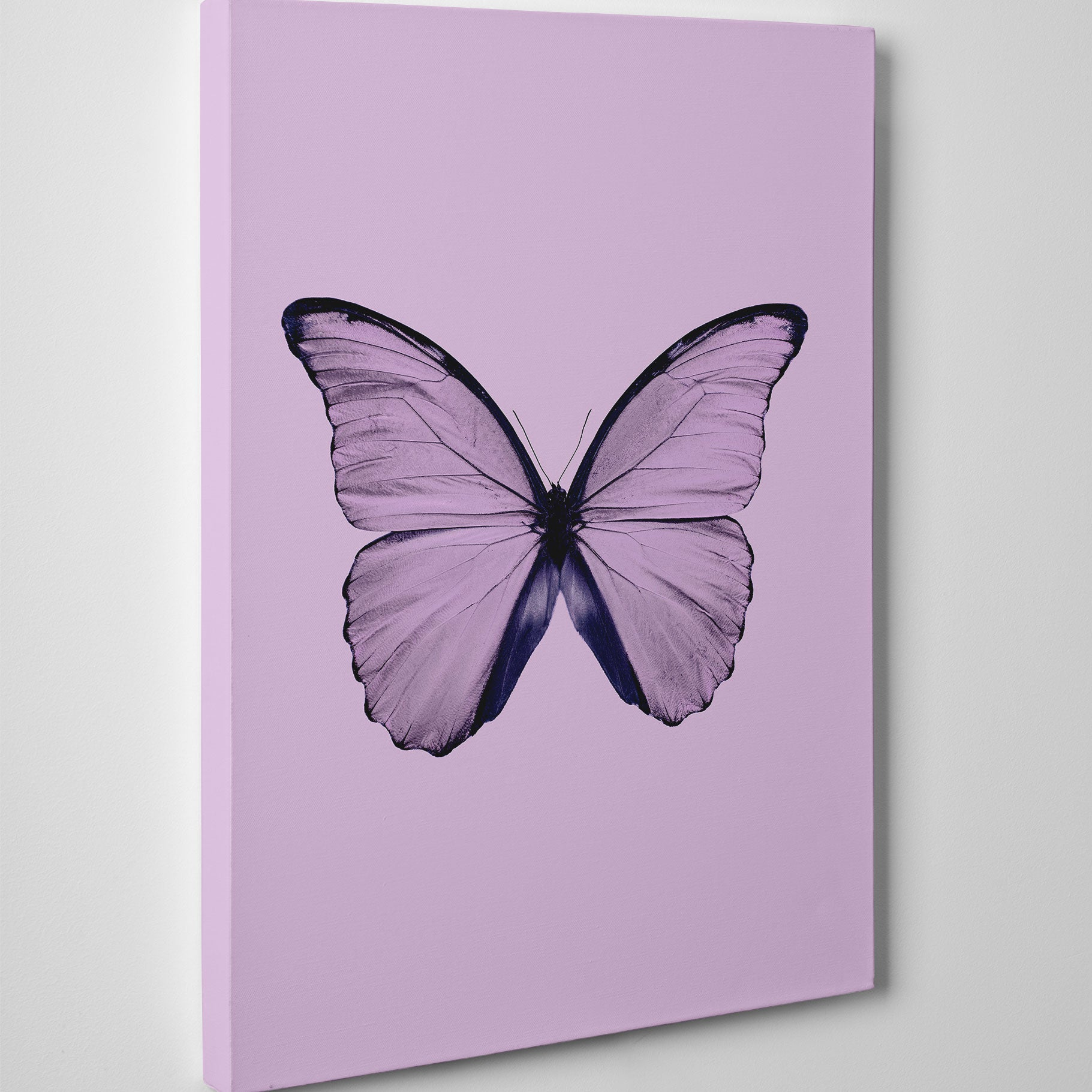Beautiful canvas print with dusty pink butterfly and background - side view