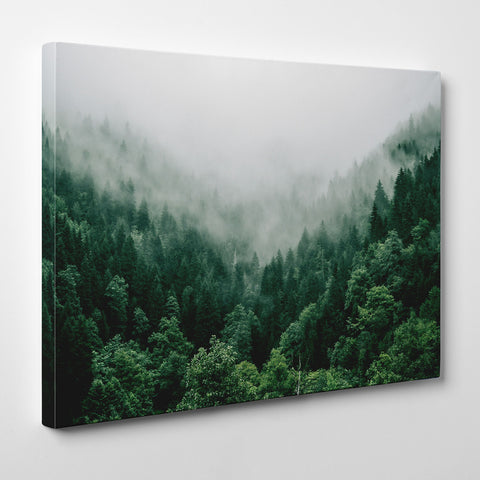 Canvas print with breathtaking green coniferous mountain forest covered in fog - side view