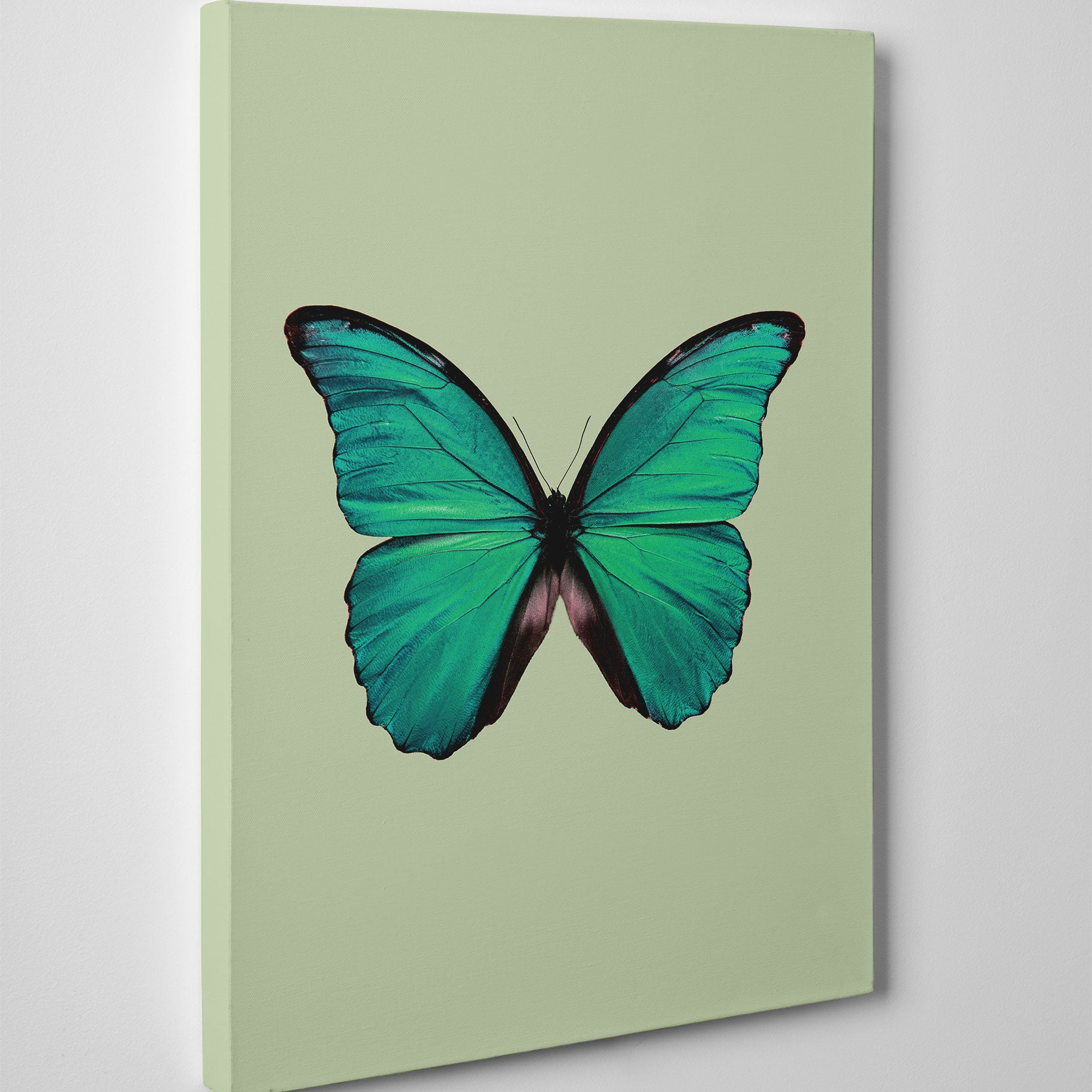 Beautiful canvas print with a green butterfly and background - side view