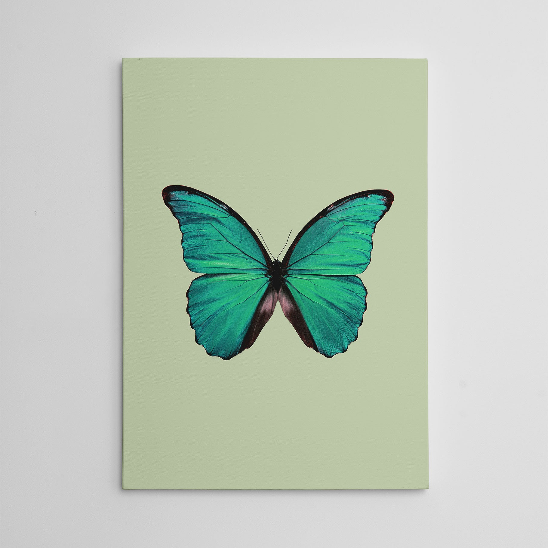 Beautiful canvas print with a green butterfly and background