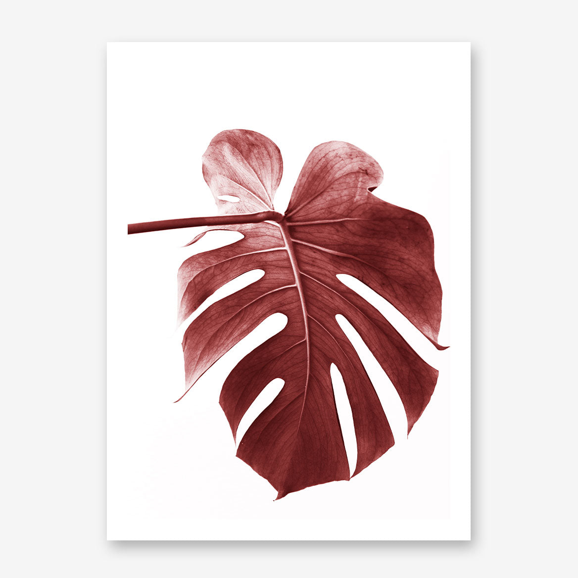 Nature inspired poster print, with a pale red leaf, on white background. Beautiful and modern wall art that will transform any room into a stylish place