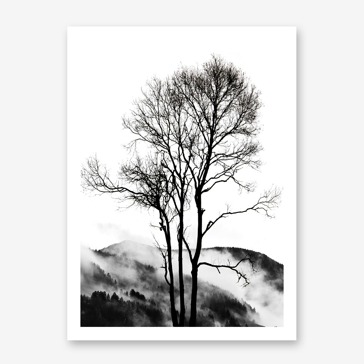 Black and white photography poster print by Kubistika, with foggy mountain behind tree.