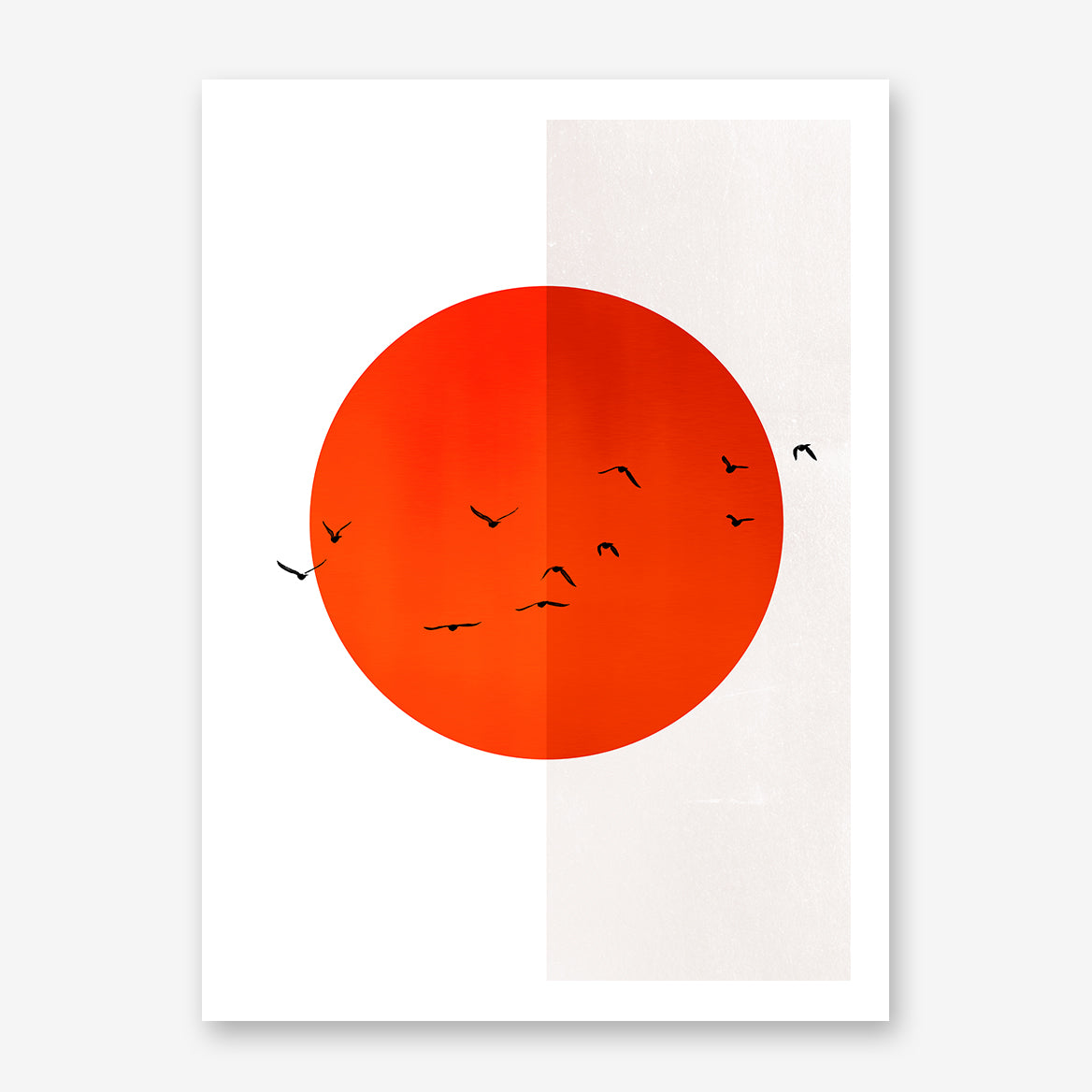 Poster print by Kubistika, with red sun and black birds, on half white, half grey background.