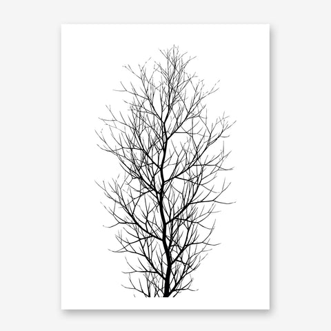 Black and white illustration poster print by Kubistika, with large tree, on white background.