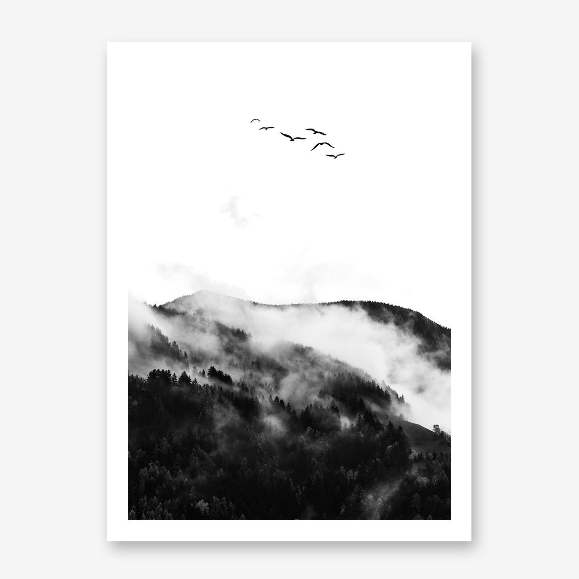 Black and white photo poster print by Kubistika, with foggy mountain forest and birds.