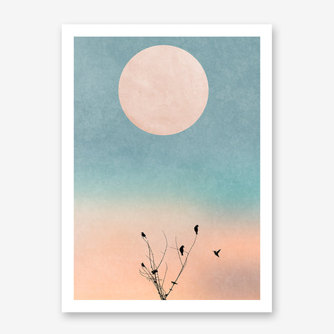 Minimalist textured poster print with dusty pink sun and black birds, on dusty blue and pink background.