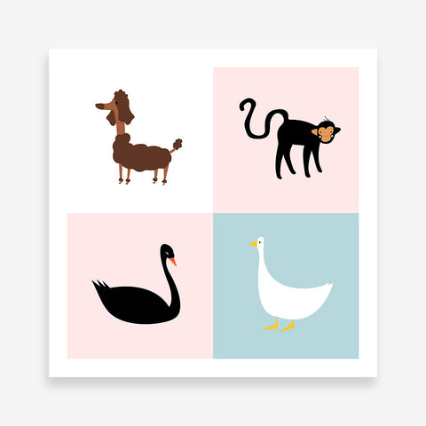 Colourful squares poster print with a black swan, a white goose, a brown dog and a black monkey.