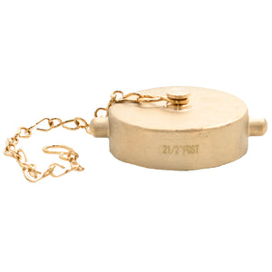 "CAP-B-250C-PL - 2.5"" Brass Cap CSA Pin Lug with Chain"
