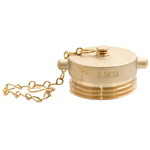 "PLUG-B-250C-PL - 2.5"" Brass Plug CSA Pin Lug with Chain"