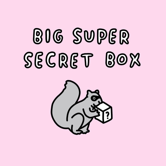 Big Super Secret Box Worth Over £50