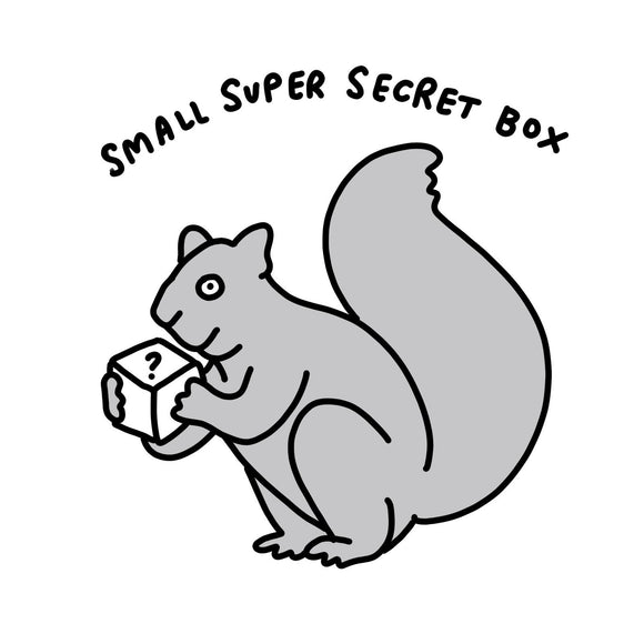 Lucky Dip Small Super Secret Box