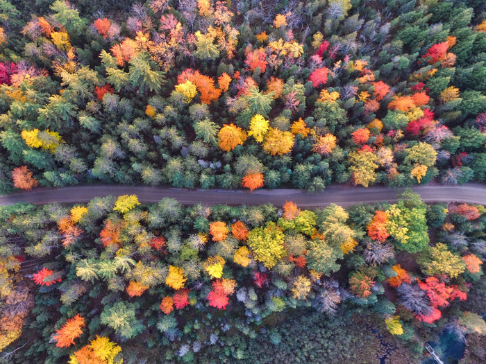 ALL THINGS FALL: A ROUND UP OF THE BEST DESTINATIONS TO TRAVEL TOO DURING THE FALL SEASON