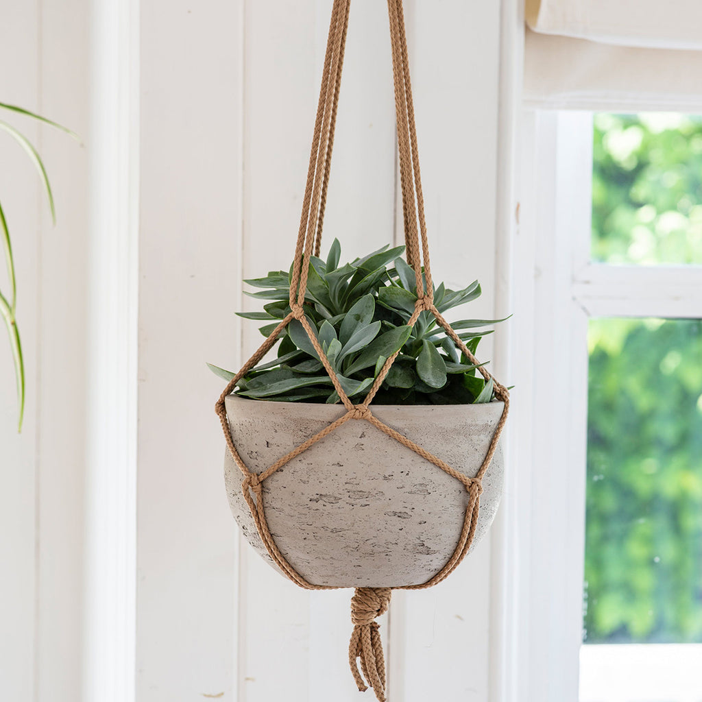 cement hanging flower pot