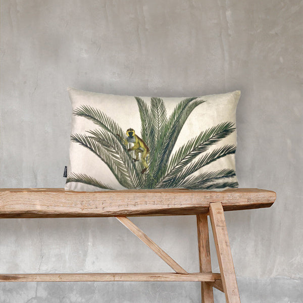 velvet monkey palm cushion