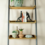 narrow ladder shelves close up