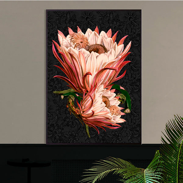 pink protea poster print