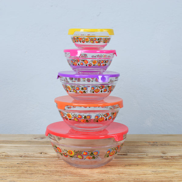 bowl leftover containers