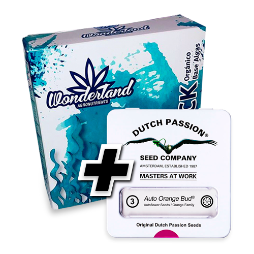 Tripack Organico + 3 semillas Dutch Passion