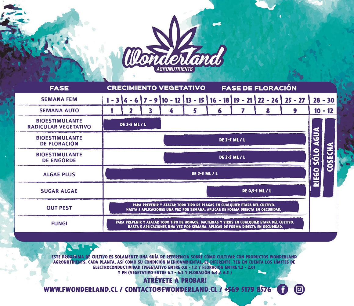 Bi-pack - Wonderland Vegetativo + Flora