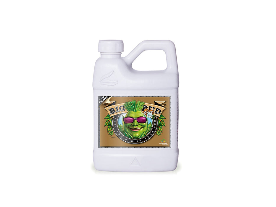 Big Bud Coco 500ML