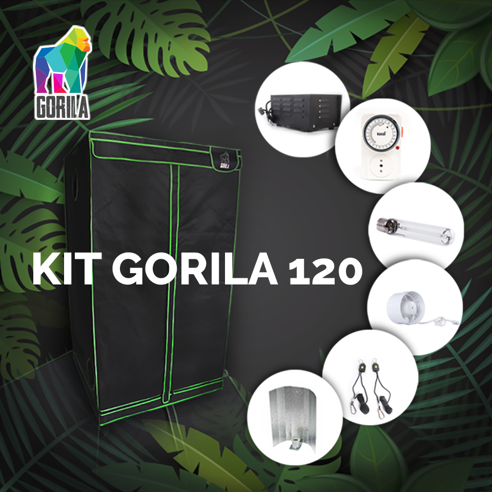 Kit Indoor Completo Gorila 120 - 600w V2.0