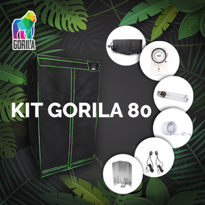 Kit Indoor Completo Dark Box 80x80x160 - 250 W