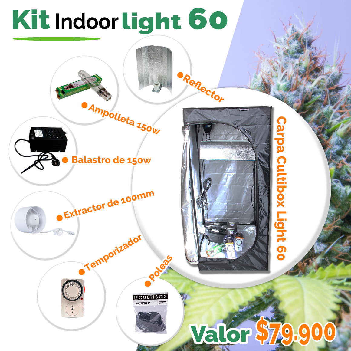 Kit Light 60
