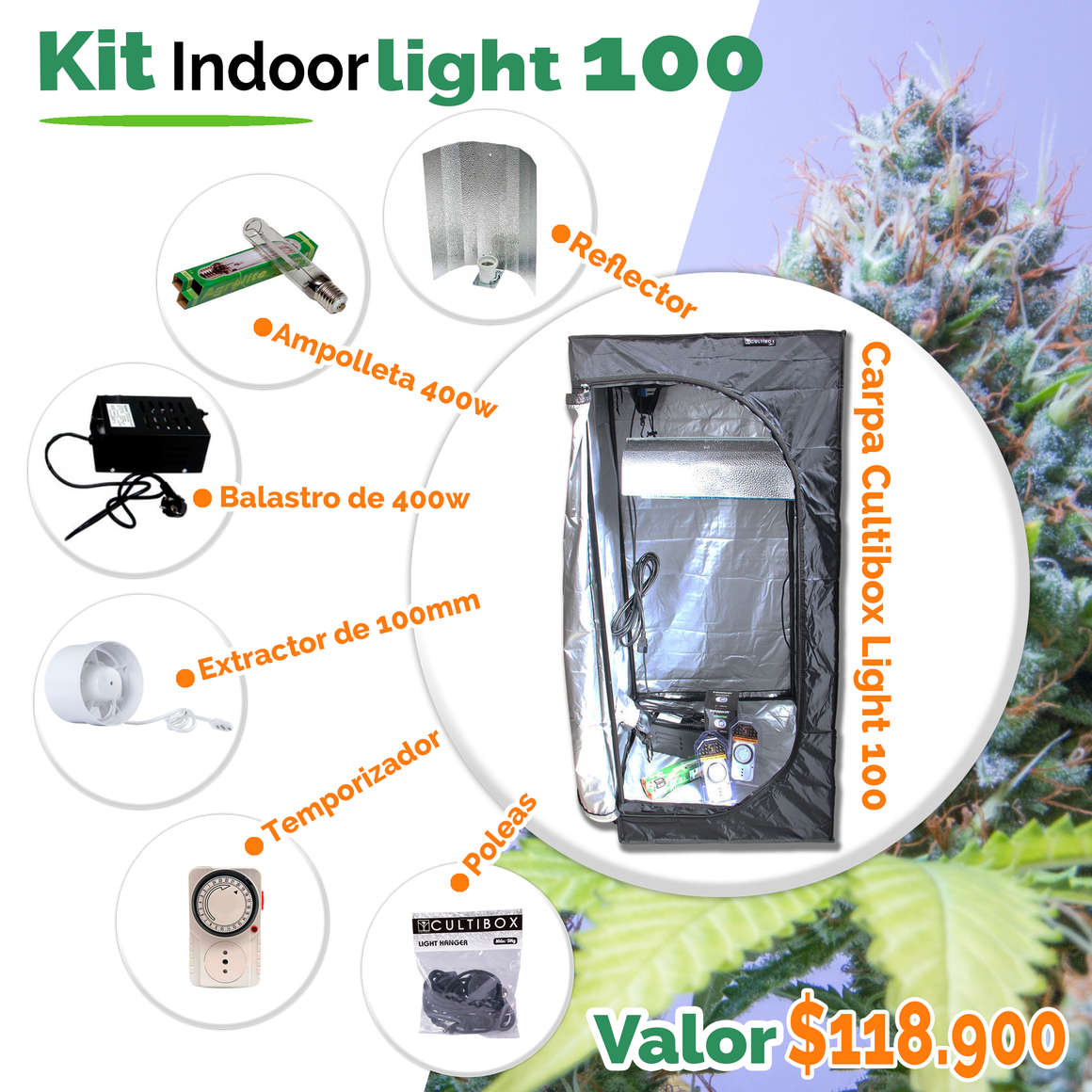 Kit Light 100