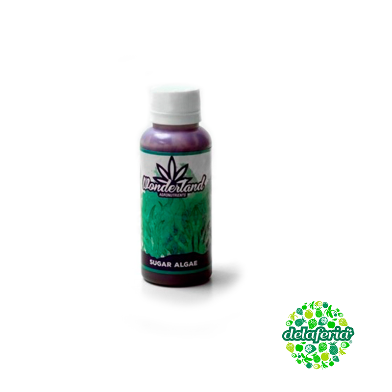 Sugar Algae (120ml) Wonderland