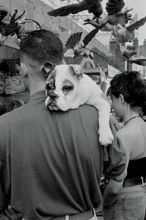 Bulldog, Camden Market, July 1989