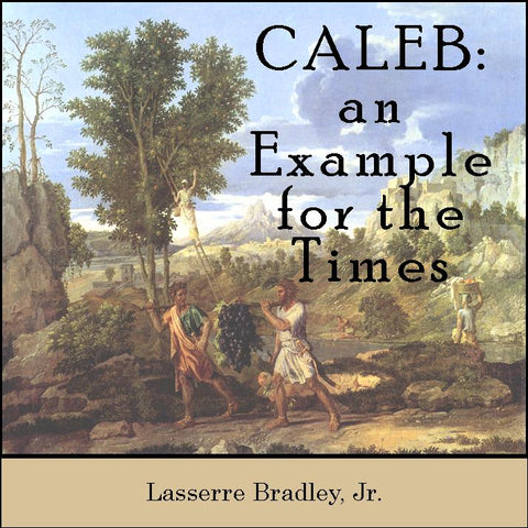 Caleb: An Example for the Times