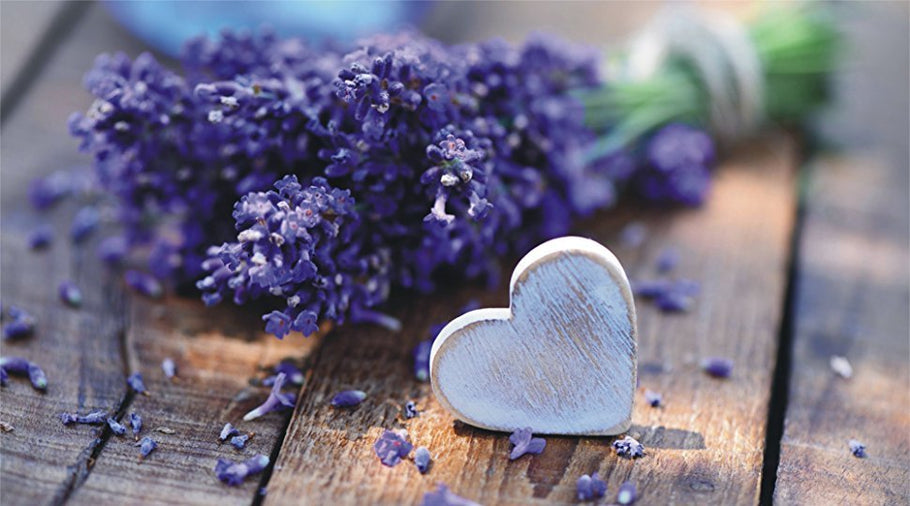 Lusting for Lavendar