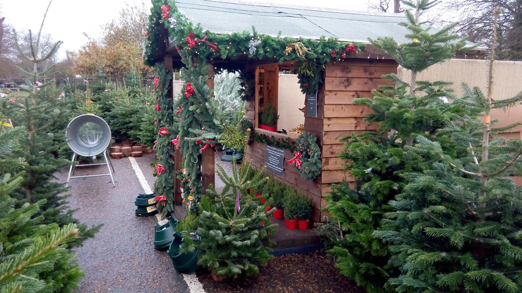 Christmas Markets and Fairs
