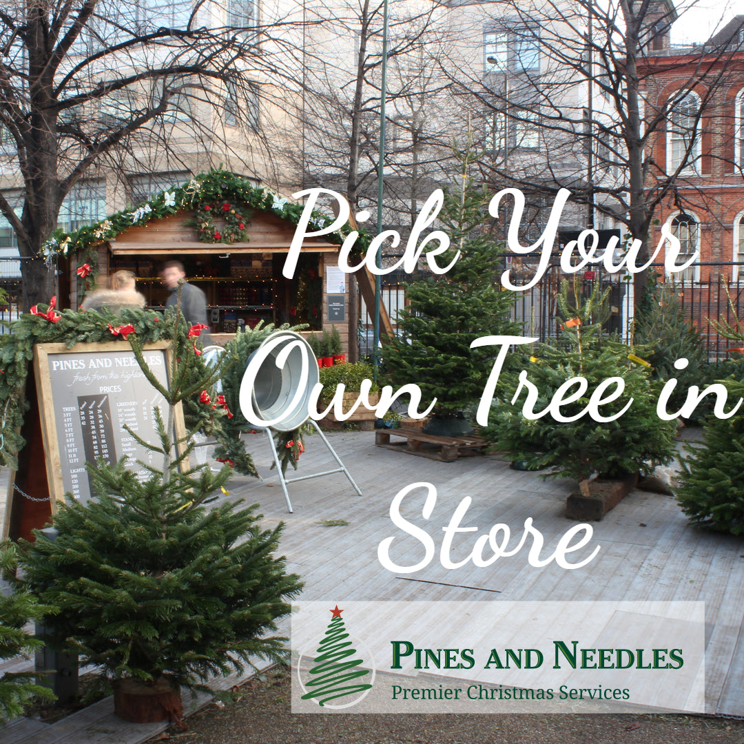 Pines and Needles Store in London