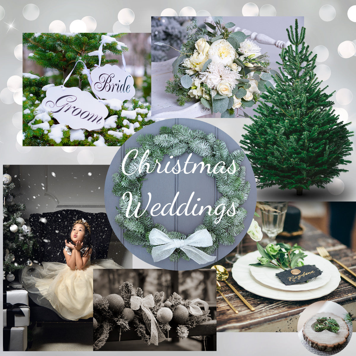 Christmas Wedding Collage from Pines and Needles