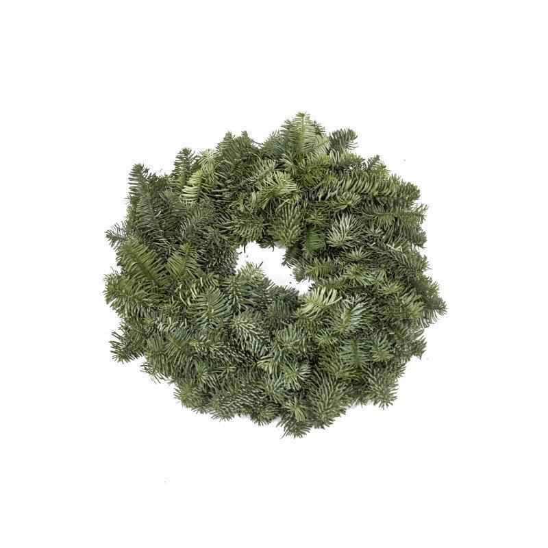 Plain Real Christmas Wreath, 10inch, from Pines and Needles