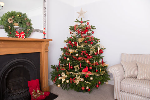 6ft Festive Decorated Christmas Tree from Pines and Needles