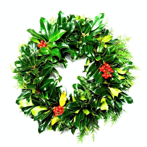 10 inch Real Holly Wreath from Pines and Needles