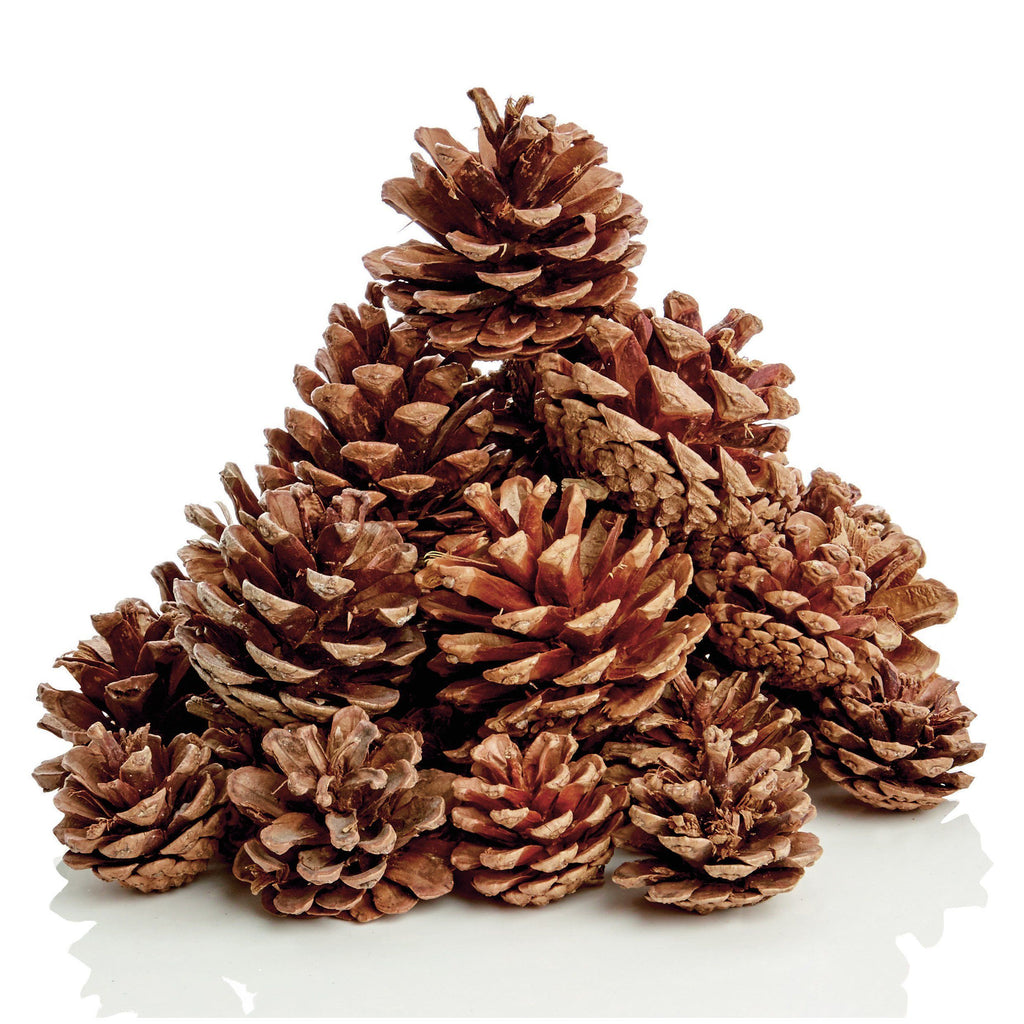 christmas-tree-decoration-natural-pine-cones