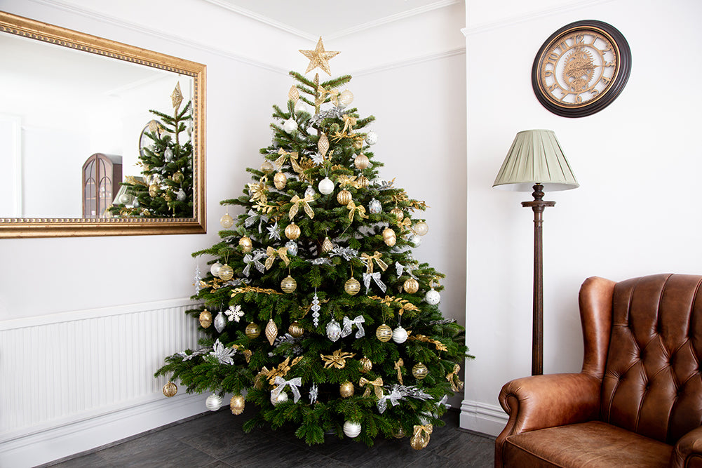Deluxe Decorated Real Christmas Trees