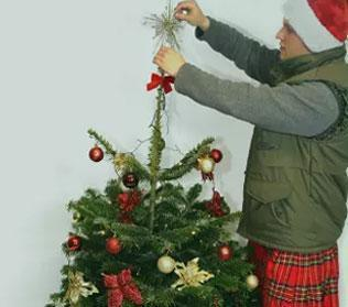 Christmas Tree Decoration Service