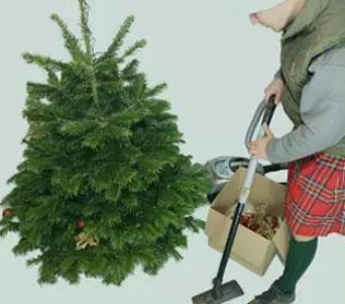 Christmas Tree Recycling Service