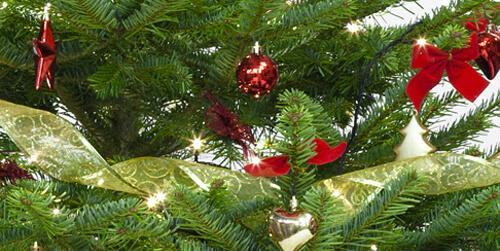festive decorated christmas tree