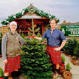Christmas Trees UK