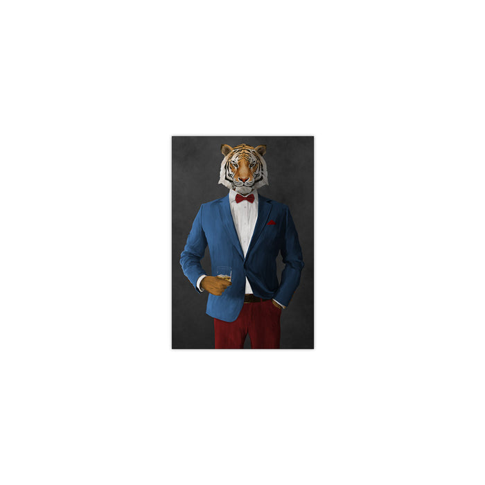 Tiger drinking whiskey wearing blue and red suit small wall art print
