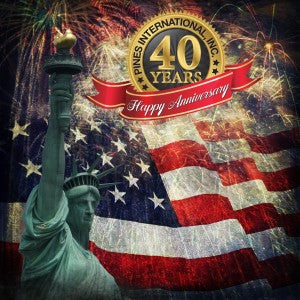 Bicentennial Company Wishes You a Happy and Safe July 4th!